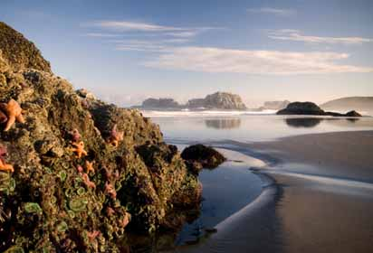 North Oregon Coast Coach Tour